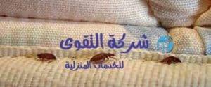 التخلص من حشرة بق الفراش
