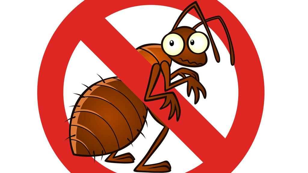 مكافحة الحشرات والأفات المنزلية