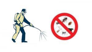 شركة مكافحة النمل الابيض بالرياض0501214920 بأحد رفيدة بعسير بالزلفي بالرس