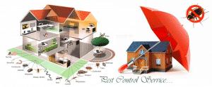 شركة مكافحة حشرات بالرياض 0501214920 ورش مبيدات شرق غرب شمال الرياض