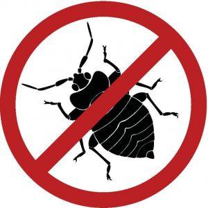 شركة مكافحة حشرات بينبع 0501214920 بالمدينة المنورة بالطائف بتبوك