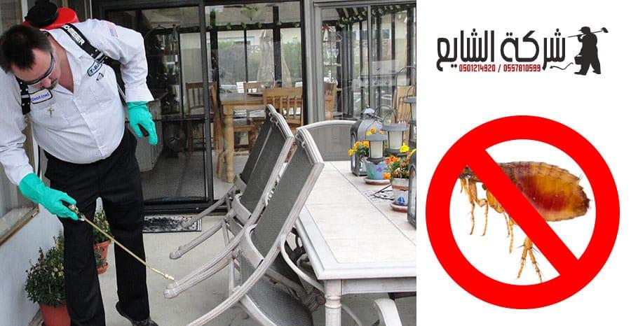 شركة مكافحة البراغيث بالرياض 0501214920 في المنزل الدمام مكة الطائف..