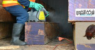 مكافحة العته بمكة 0501214920 افضل شركة ابادة الحشرات المنزلية بالرياض بجده